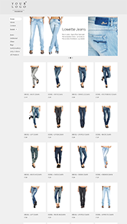 Start your online store with shop themes m  0042 stylee